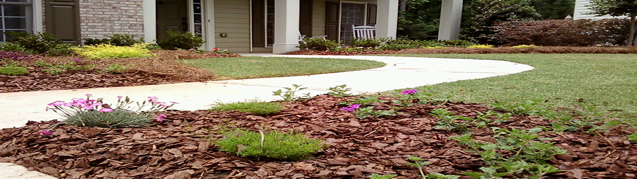 All About Landscaping | Landscaping Services In Glendale Heights